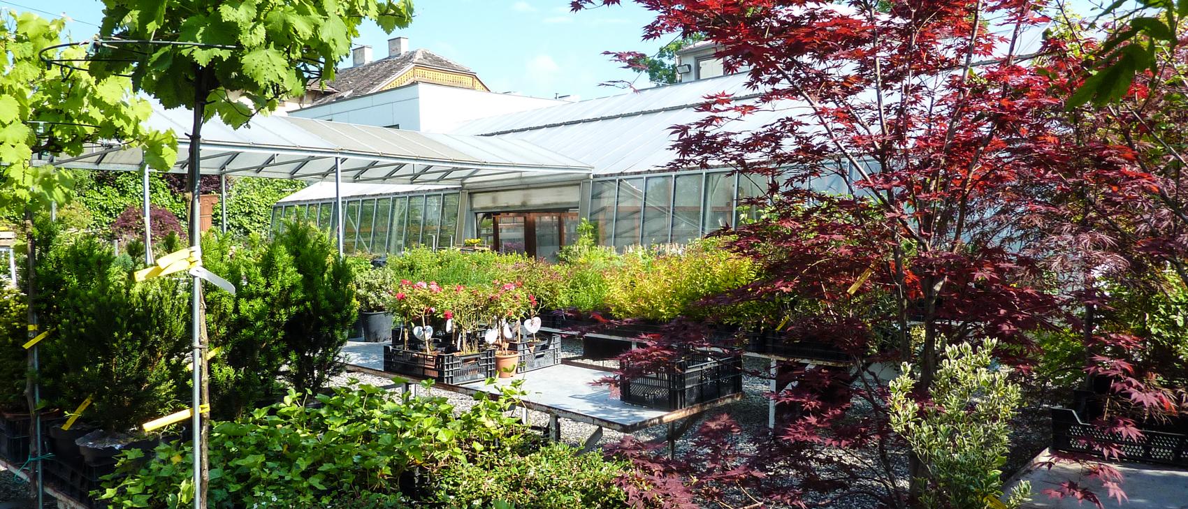 Gartengestaltung vorgarten dekorieren gestalten sch n for Gartengestaltung schatten