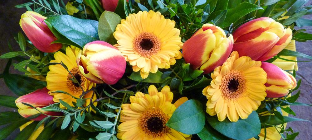 Garten weilinger blumen deko gartencenter for Blumen gartengestaltung
