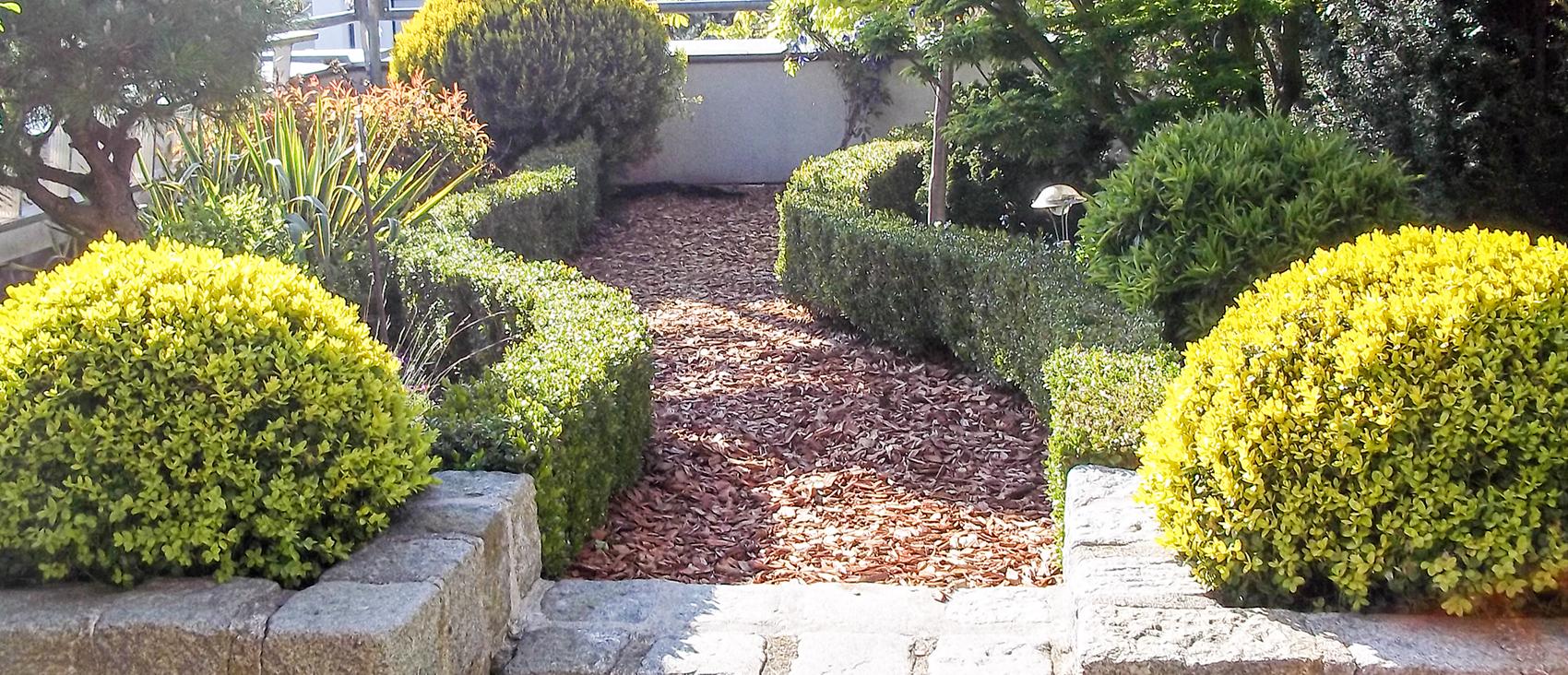 Garten weilinger blumen deko gartencenter for Gartengestaltung blumen